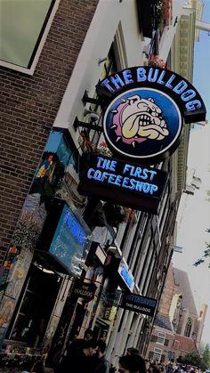 Amsterdam, Canal, Travel, Europe, Coffee shop, Bulldog