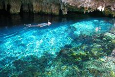 ¿Sabías qué... Los cenotes eran considerados por los mayas las puertas al inframundo? En se ubica la ruta de cenotes, uno de los atractivos que debes disfrutar en #RivieraMaya