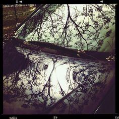 El viento de #leganes arrasa con las pequeñas ramas, suéltate el #pelo y disfruta de la tarde #comolavidamisma patrocinado por #thebacpack #outletgacela #bolsosazkona #nosmovemoscontigo #nosvemosenlastiendas