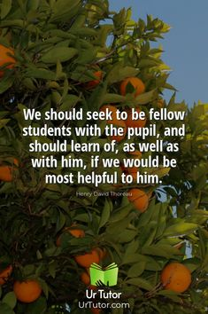 Education Qoutes, Find A Tutor, Online Tutoring, Student, Website, Math, Learning, Math Resources, Studying