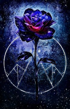 """This appears to be derived from """"A Court of Thorns and Roses"""", by Rio Burton. Blue Roses Wallpaper, Cute Galaxy Wallpaper, Purple Wallpaper Iphone, Butterfly Wallpaper, Dark Wallpaper, Wallpaper Pictures, Planets Wallpaper, Beautiful Flowers Wallpapers, Beautiful Nature Wallpaper"""