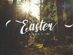 Easter Sunday Forest Church PowerPoint
