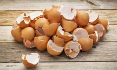Dovete sapere, che i gusci delle uova, possono essere utilizzati nel vostro giardino o nei vostri vasi come concime naturale.