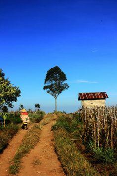 Desa lembanna,sulawesi selatan.