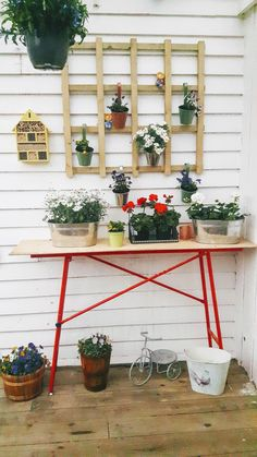 Good Pieces In Life: Seinäkukkasia - Wall flowers
