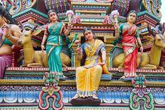 3755411-hindu-temple-in-singapore.jpg (800×533)