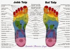 Shiatsu Massage – A Worldwide Popular Acupressure Treatment - Acupuncture Hut Acupressure Treatment, Acupuncture, Self Massage, Alternative Treatments, Positive Mind, Massage Therapy, Alternative Medicine, Physical Therapy, Young Living