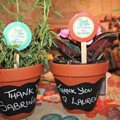 Mummyology: thank you flowerpots!
