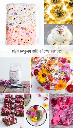 Eight Vegan Edible Flower Recipes for Spring Idle Hands Awake Diy Party Food, Diy Food, Ideas Party, Vegan Treats, Vegan Desserts, Plated Desserts, Flower Food, Edible Flowers, Edible Plants