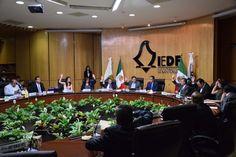 El consejero presidente del IEDF, Mario Velázquez Miranda, rinde Informe Anual de actividades 2015