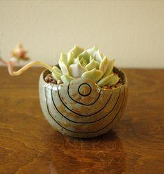 Small Brown Pinch Pot