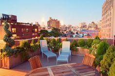 toit-terrasse magnifique avec bacs de plantes