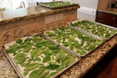 [Pinning now, reading later - when my basil plants are nice and big!] How To Dry Basil