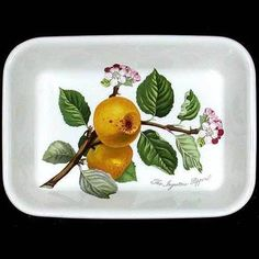 Portmeirion Pomona Lasagna Dish 9 by 7 Inch PIPPIN APPLE