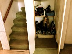BLOG POST: The cupboard under the stairs, HARRY POTTER