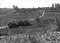 1979 r. kierunek S, widok na os. Ruta od strony ul. Juranda, dzisiaj wąwóz i tzw. osiedle Wiśniowy Sad Autorzy zdjęć: M. Linkowska  i M. Sachadyn. Vineyard, Sad, Outdoor, History, Outdoors, Outdoor Games, Outdoor Living