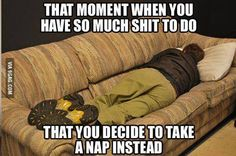 Funny memes That moment when you have so much stuff to do that you decide to take a nap instead Funny Quotes, Funny Memes, Jokes, Hilarious, Quotes Pics, True Quotes, That Moment When, Take A Nap, Student Life