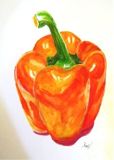 Orange Bell Pepper Sketch - graphite and watercolors