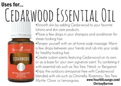 Just a few uses for Cedarwood Essential Oil! This is one we keep on hand in large quantities as we use it for a lot! Add it to shampoo, use it for bedtime, and even for my perfume.  www.YourOilLounge.com/ChrissyBarrow