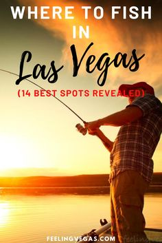 Las Vegas has more to offer than Casinos and Night clubs. If you are the outdoorsy type, the fishing doesn't get much better than around… Las Vegas Tips, Visit Las Vegas, Boulder City, Lake Mead, Lake Water, Best Casino, Best Fishing, Best Vacations, Plan Your Trip