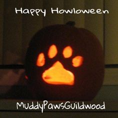 Pet Grooming, Pumpkin Carving, Pets, Animals And Pets