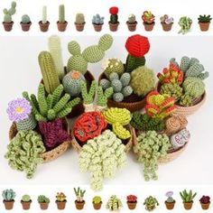 Look at my bounty of crocheted plants! 24 mix-and-match cactus and succulent species, which come together into 6 cactus/succulent gardens. Crochet Cactus, Crochet Art, Crochet Home, Cute Crochet, Crochet Motif, Crochet Animals, Crochet Flower Patterns, Crochet Designs, Crochet Flowers