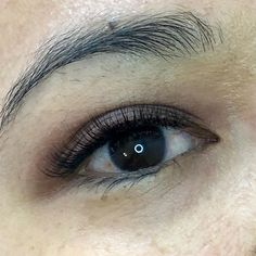 Beautiful D curl Russian lashes using for a softer natural look - stunning Long Lashes, Eyelashes, Russian Lashes, Natural Looks, Looking Stunning, Eyelash Extensions, My Hair, Curls, Hair Beauty