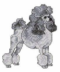 cross stich poodle
