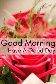 Roses morning wishes. Good Morning Beautiful Flowers, Good Morning Images Flowers, Latest Good Morning Images, Good Morning Roses, Happy Morning, Good Morning Messages, Good Morning Greetings, Good Morning Good Night, Morning Wish