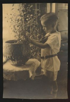 vintage photo boy with plant in McCoy jardiniere