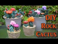 DIY Painted Rocks - Cactus Decorations - YouTube