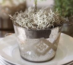 Inspiration . . . Etched Mercury Glass Vases & Cachepots | Pottery Barn