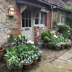 I think April is probably my favourite month. Everything is SO beautiful (I keep stopping the car to look at lambs in fields). And I… Cottage Garden Patio, Cottage Garden Design, Garden Oasis, Cottage Gardens, Garden Spaces, Outdoor Potted Plants, Potted Garden, Tulips Garden, Pot Plants