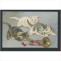3 Cats with a Horn Old Postcard on eBid United Kingdom