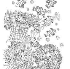 The Aquarium Colouring Book Cuttlefish