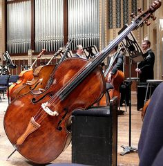 cleveland orchestra by scleroplex, via Flickr  #music #instrument #forms
