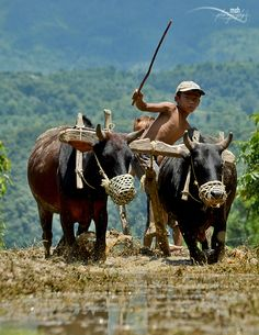 Little Farmers by Mohan Duwal, via 500px