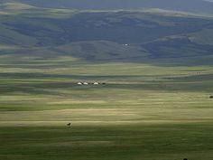 Liberté en Altaï