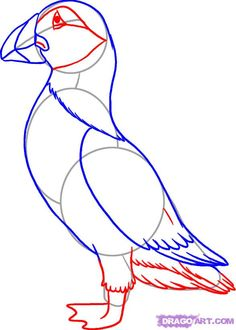 Bird Puffin Coloring Online  Super Coloring  thema engeland