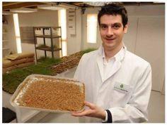 Micronutris- mangeons des insectes
