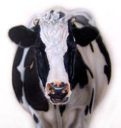 Una vaca perfecta del ilustrador Miguel del Cerro