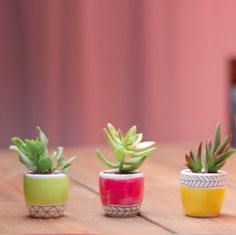 A DIY painted-planter design to spring some new life into your garden.