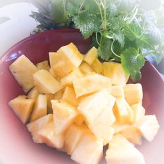Now you can follow me on pinterest - AIP4life Follow Me, Fruit Salad, Cantaloupe, Pineapple, Canning, Instagram, Food, Fruit Salads, Pine Apple