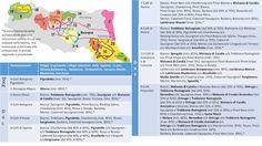 Piccolo Mondo : Denominazioni e vitigni dell'Emilia Romagna