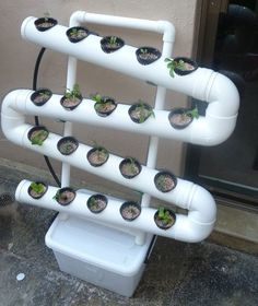 Another easy way to create a vertical garden out of PVC pipes is to cut some holes in the pipes and put cups in the holes that you will use as planters.