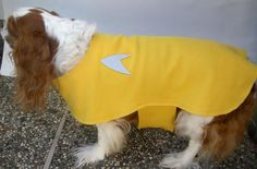 Dog Star Trek Coat Jacket Kirk Yellow Gold Shirt L Pet Costume Halloween Fleece #Handmade