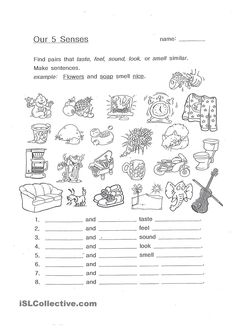 A collection of English ESL worksheets for home learning, online practice, distance learning and English classes to teach about senses, 5 senses 5 Senses Poem, Five Senses Worksheet, English Adjectives, Teaching Aids, Writing Skills, Printable Worksheets, Creative Writing, Elementary Schools, Physics