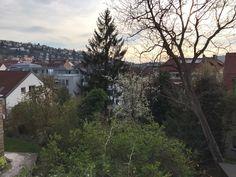 View over parts of Stuttgart from Neue Weinsteige