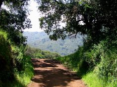 Hike Rancho San Antonio