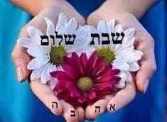 Shabbat Shalom In Hebrew, Shabbat Shalom Images, Shavua Tov, Comme, Cheer, Beautiful Pictures, Religion, Happy Birthday, Roses